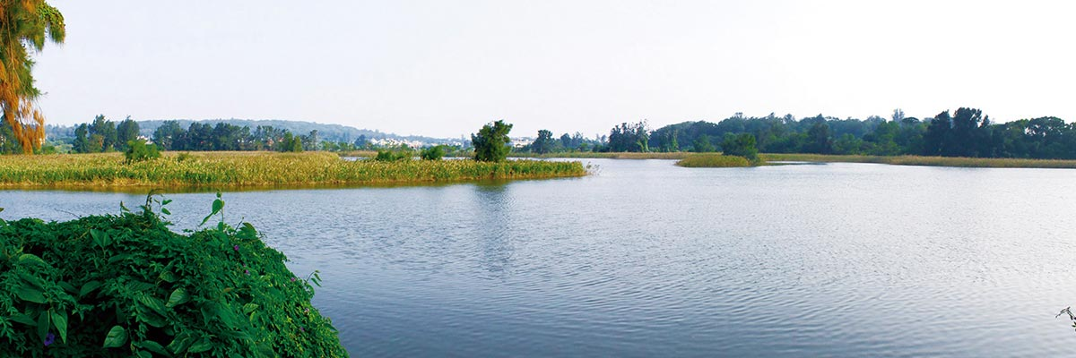 Lingshui Lake